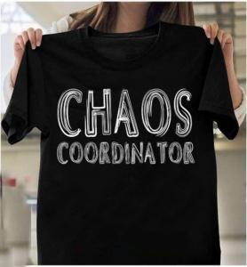 Chaos Coordinator Teacher Cool T-Shirts