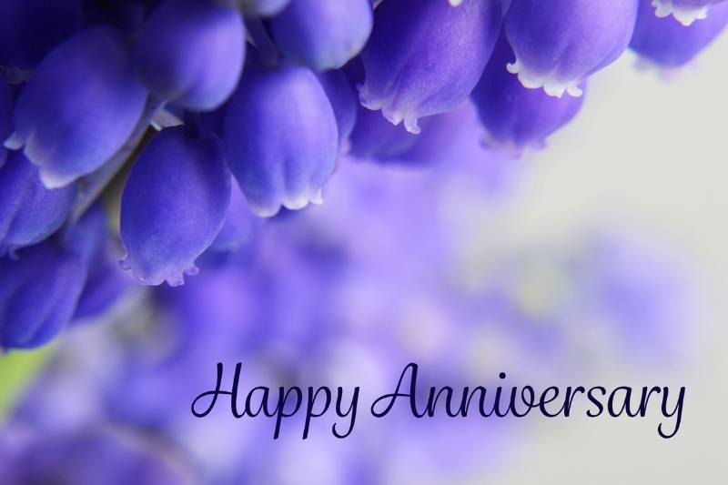 7 Years Wedding Anniversary Images - 44