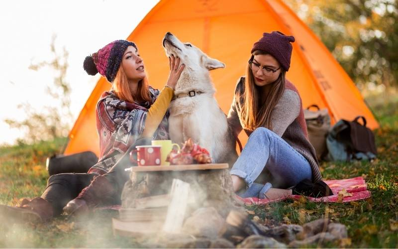 Happy Birthday Camping Images - 1