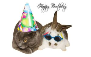 Happy Birthday Card Images Free Download 2021