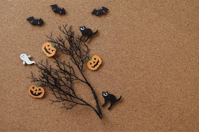 Happy Halloween Pictures - 21