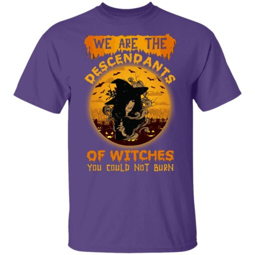We Are The Descendants Of Witches You Could Not Burn Womens T-Shirt 11 of Sapelle