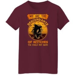 We Are The Descendants Of Witches You Could Not Burn Womens T-Shirt 45 of Sapelle