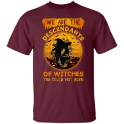 We Are The Descendants Of Witches You Could Not Burn Womens T-Shirt 21 of Sapelle