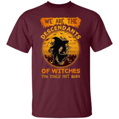 We Are The Descendants Of Witches You Could Not Burn Womens T-Shirt 3 of Sapelle