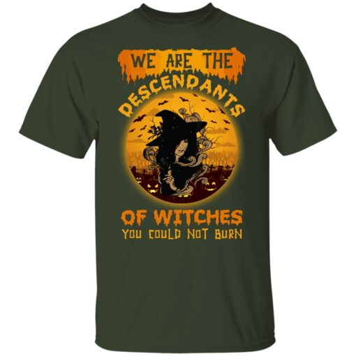 We Are The Descendants Of Witches You Could Not Burn Womens T-Shirt 8 of Sapelle