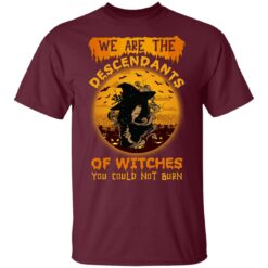 We Are The Descendants Of Witches You Could Not Burn Womens T-Shirt 33 of Sapelle