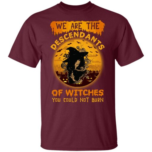 We Are The Descendants Of Witches You Could Not Burn Womens T-Shirt 9 of Sapelle
